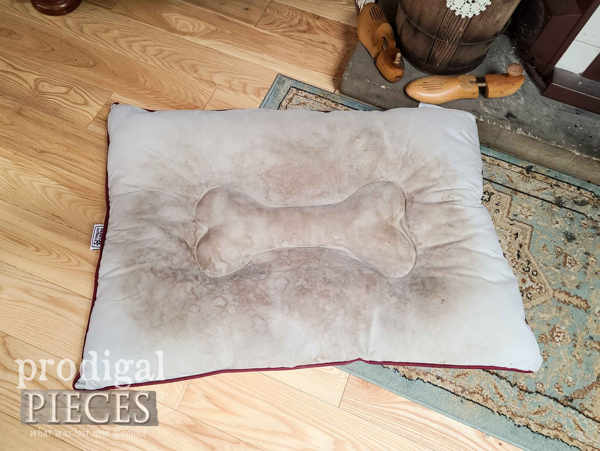Dirty Pet Bed Before Cleaning by Larissa of Prodigal Pieces | prodigalpieces.com #prodigalpieces