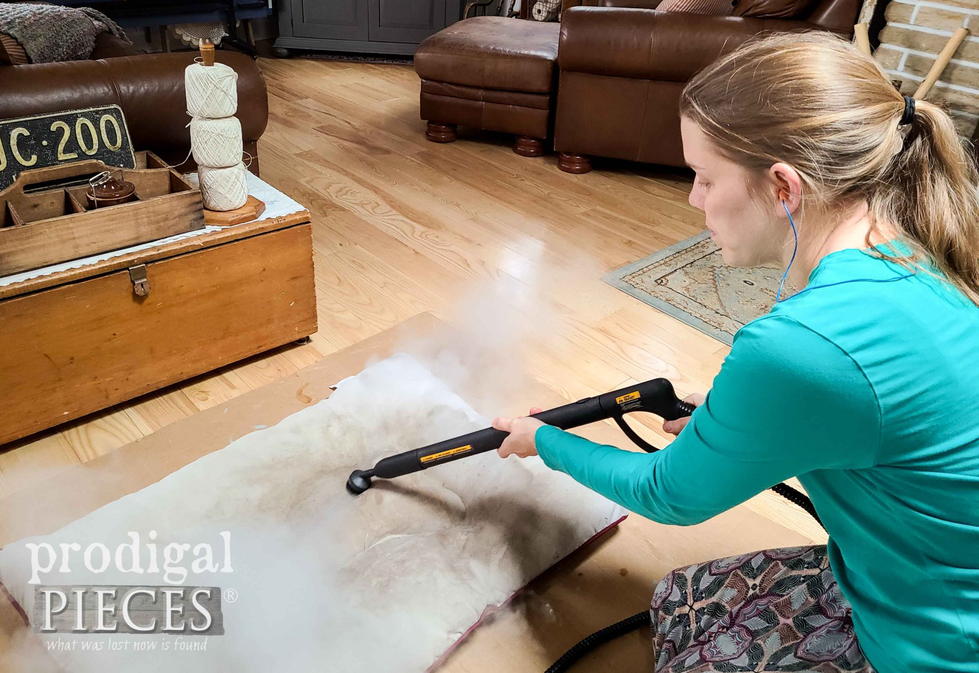 Larissa of Prodigal Pieces Pet Bed Cleaning with the SteamMachine Elite | prodigalpieces.com #prodigalpieces