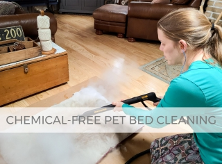 Pet Bed Cleaning by Larissa of Prodigal Pieces | prodigalpieces.com #prodigalpieces