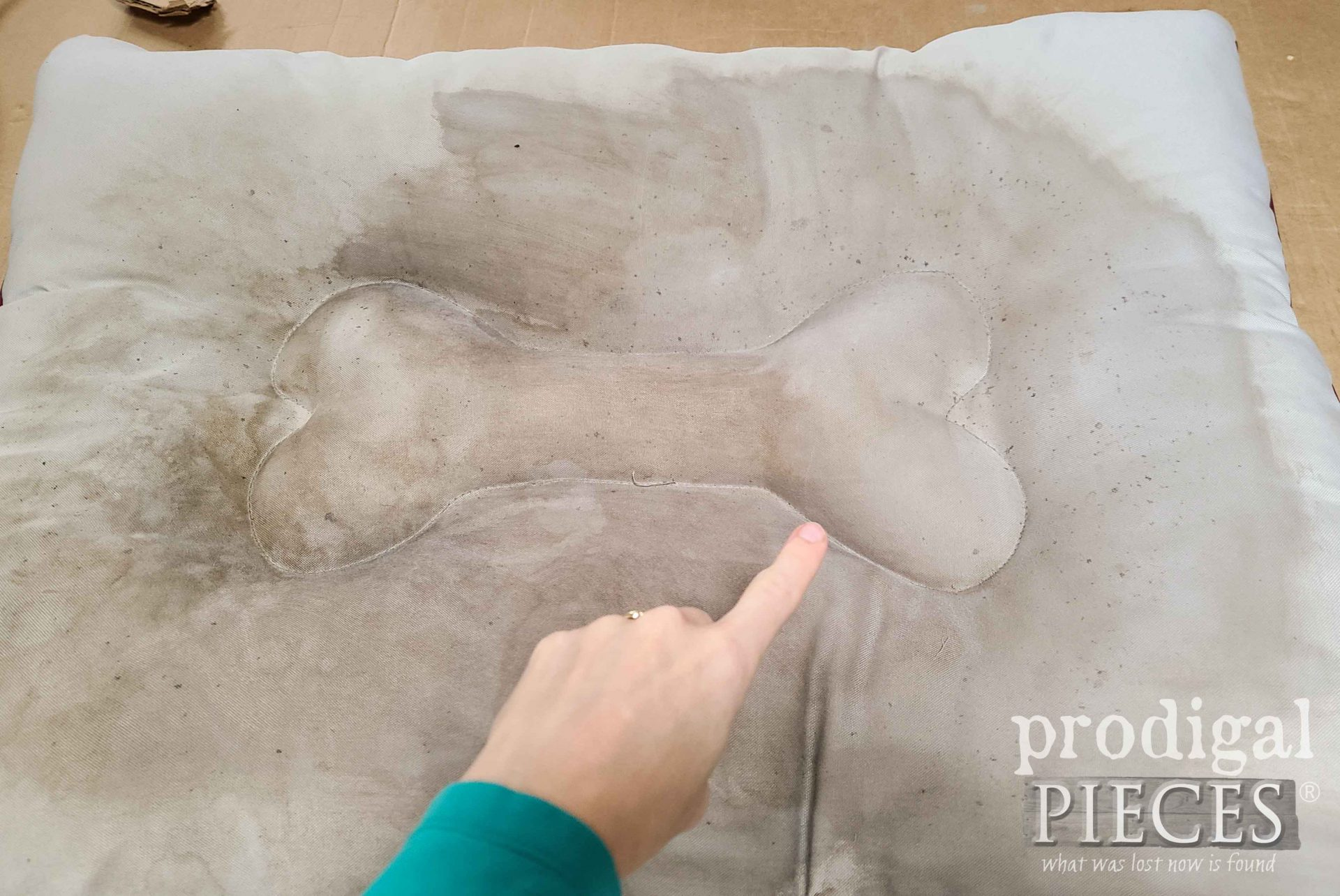 Pet Bed Steam Cleaning Proof by Prodigal Pieces | prodigalpieces.com #prodigalpieces