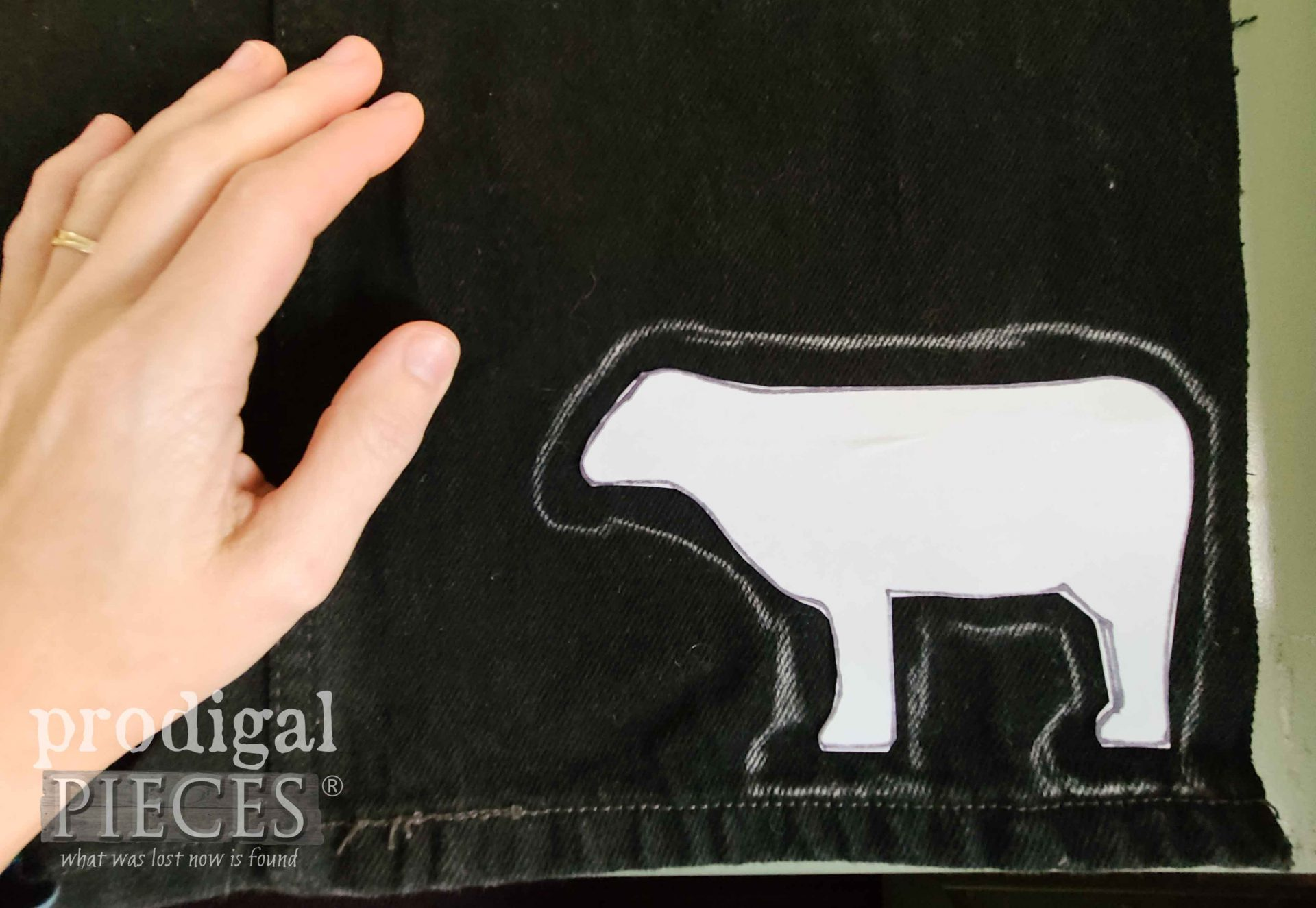 Tracing Cow on Black Jeans | prodigalpieces.com