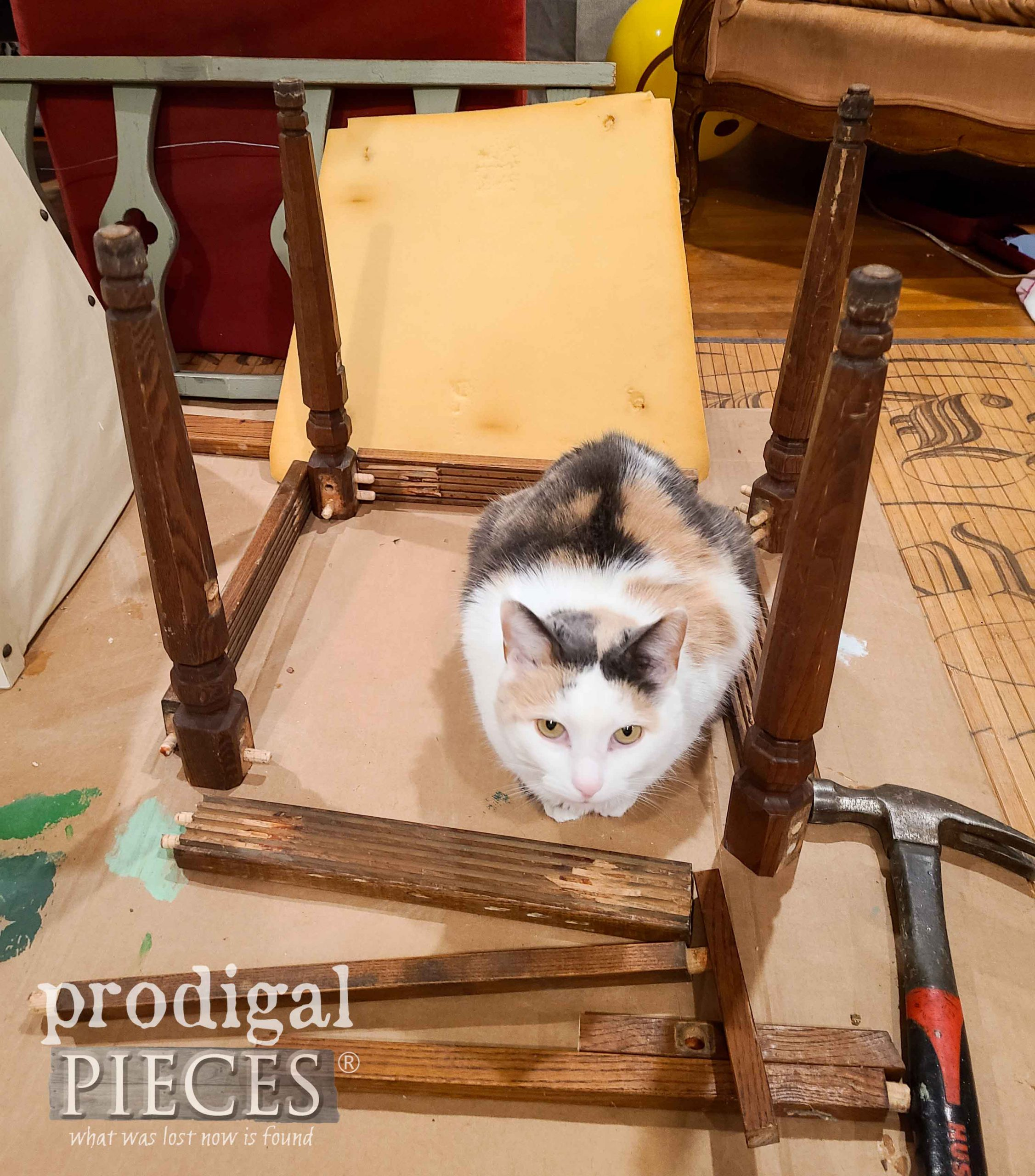 Calico Cat in Upcycled Chair Parts | prodigalpieces.com