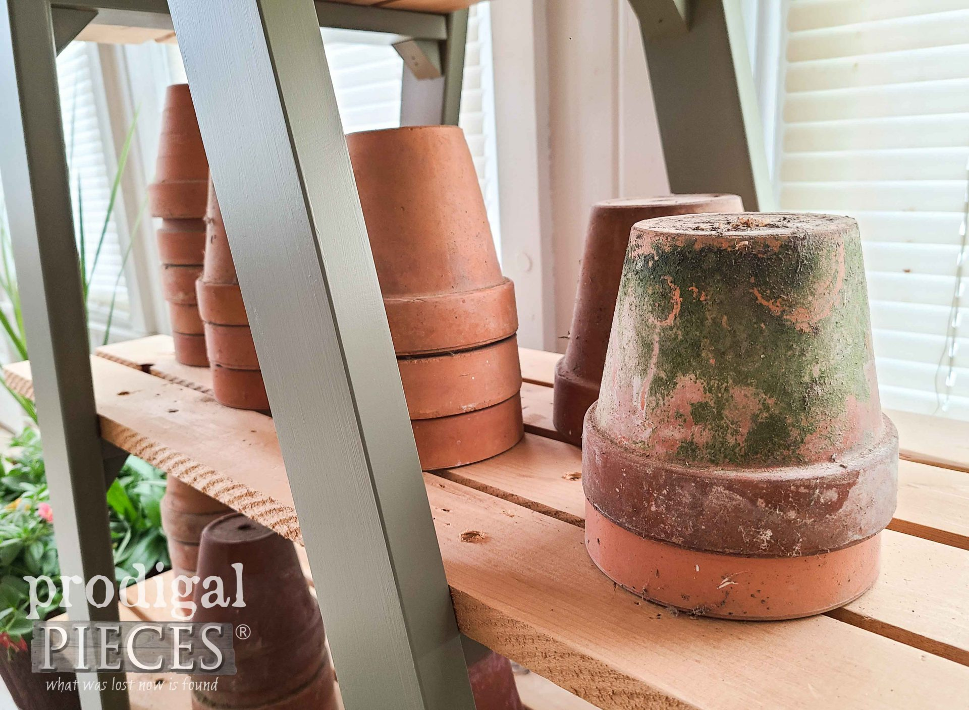 Terra Cotta Pot with Patina by Prodigal Pieces | prodigalpieces.com #prodigalpieces #garden #home #homedecor