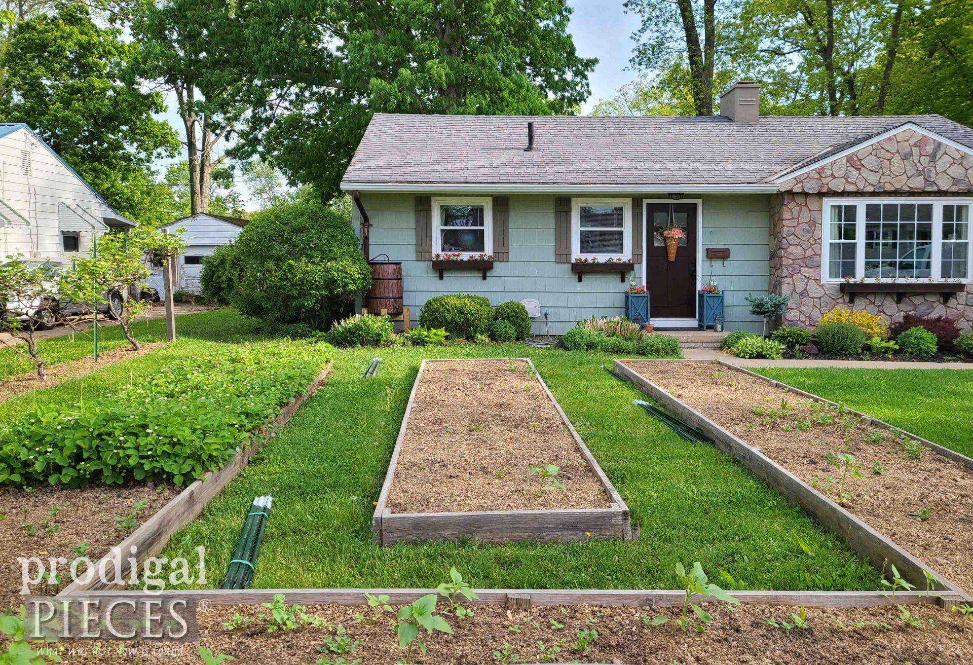 City Raised Garden Bed DIY Style by Larissa of Prodigal Pieces | prodigalpieces.com #prodigalpieces #garden #home