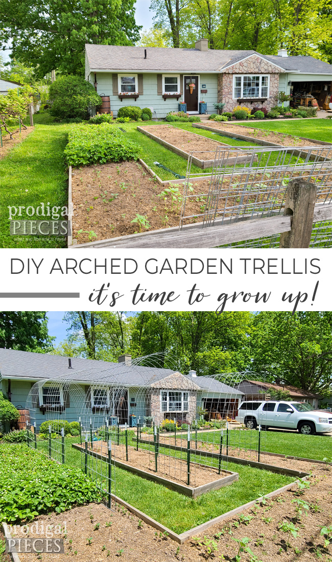 You can garden up in style too! This DIY arched garden trellis is simple & easy to install. Head to Prodigal Pieces | prodigalpieces.com #prodigalpieces #garden #diy #home #gardening