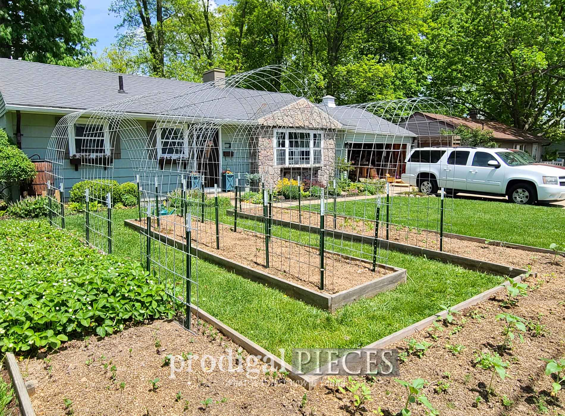 Featured DIY Arched Garden Trellis by Prodigal Pieces | prodigalpieces.com #prodigalpieces #garden #diy #home