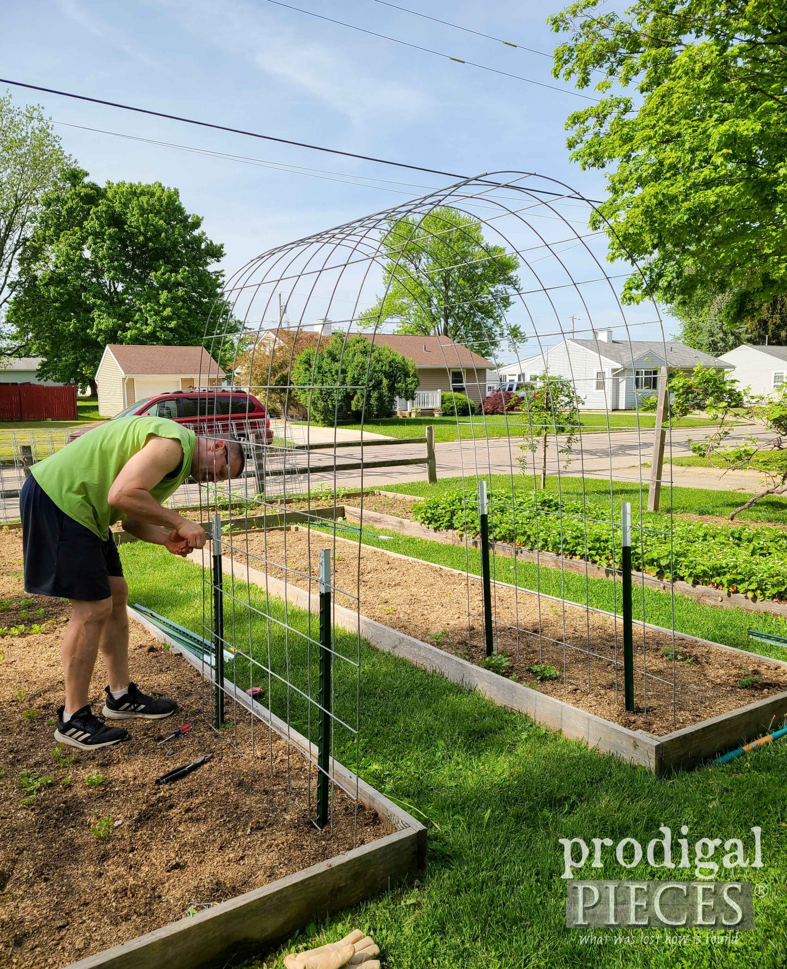 Mounting Cattle Panels to DIY Arched Trellis | prodigalpieces.com
