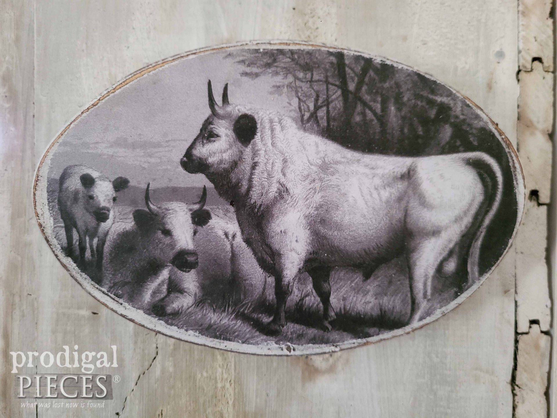 Vintage Cow Print with White Bull by Prodigal Pieces | prodigalpieces.com #prodigalpieces #bull #cow #print